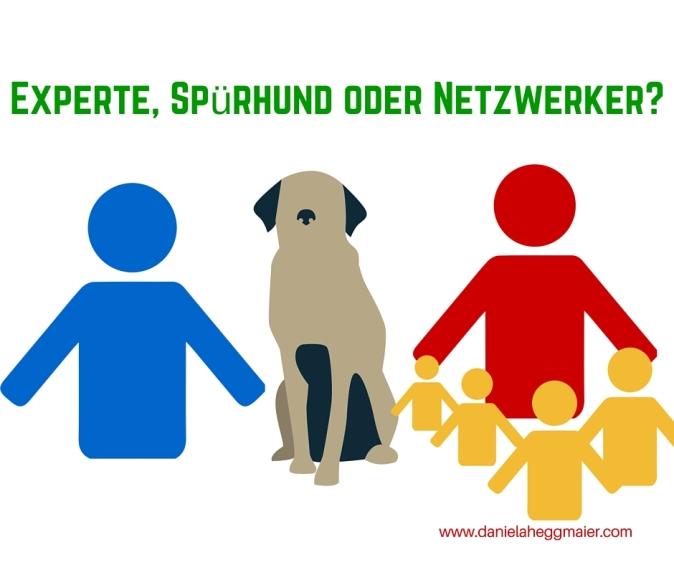 Experte, Spürhund oder Netzwerker