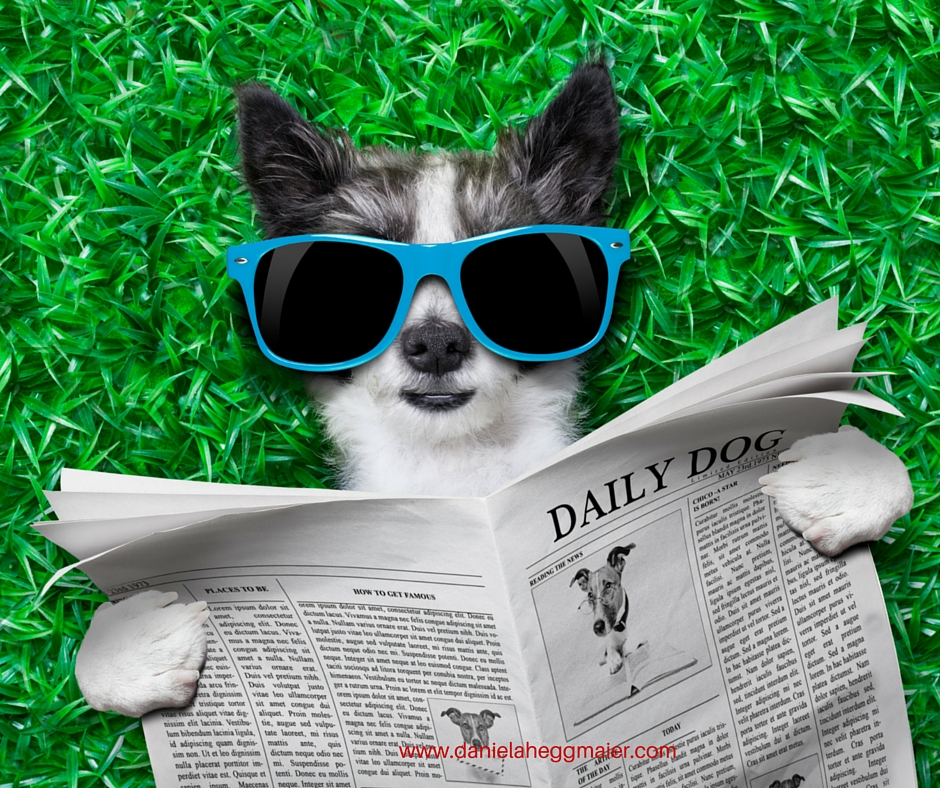 Online Texte Blog Webseite Newsletter lesefreundlich schreiben