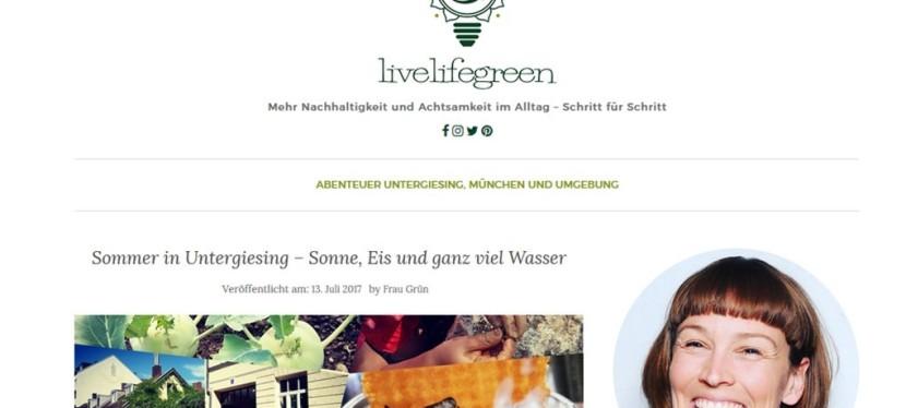 Preisgekrönter Blog: Interview mit Alexandra Achenbach von Livelifegreen.de