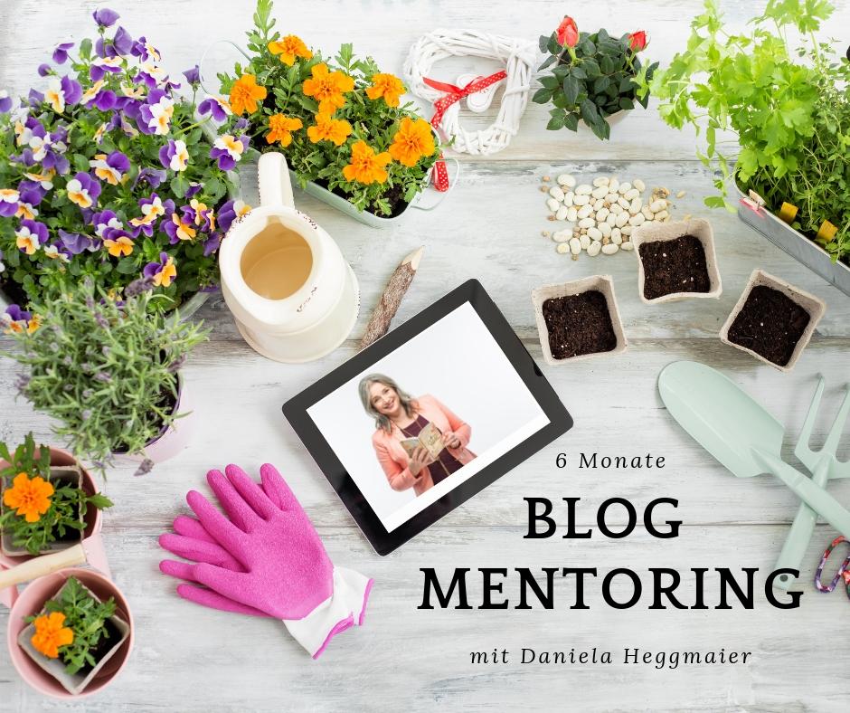 Blog Mentoring Daniela Heggmaier